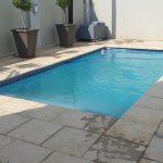 pool cleaner
