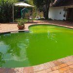 pool lining
